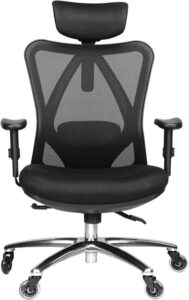 Duramount Ergonomic Office Chair