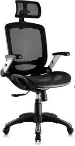 Gabrylly Ergonomics Mesh Office Chair